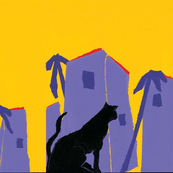 Le chat des collines
